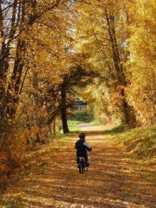 velo-automne